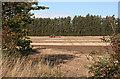 NJ2368 : Still Ploughing by Anne Burgess