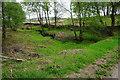 SK2576 : Stream flowing off Stoke Flat by Bill Boaden