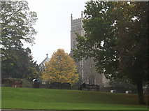 TM1644 : St.Margaret's Church, Ipswich by Adrian Cable