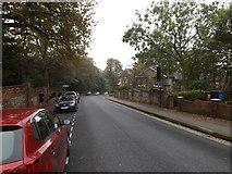 TM1644 : Fonnereau Road, Ipswich by Adrian Cable