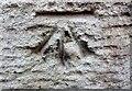 SJ5373 : Cut Mark Hollins Farm Waterloo Rd Mouldsworth by Monica Stagg