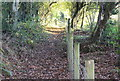 ST1898 : Footpath up to Oakdale by M J Roscoe