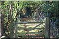 ST1898 : Footpath down from Oakdale by M J Roscoe