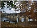 NY9464 : Hexham Bridge carries Hadrian's Cycleway and the A6079 across the River Tyne by Tim Glover