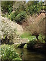 SJ8383 : Looking down the River Bollen in the gardens at Quarry Bank Mill by Rod Allday