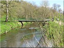SJ8481 : Footbridge over the River Bollin in The Carrs park by Rod Allday