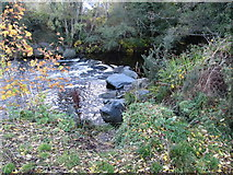 J3731 : Weir on the Shimna in Islands Park, Newcastle by Eric Jones