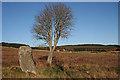 NJ6122 : Druidstone Recumbent Stone Circle (6) by Anne Burgess