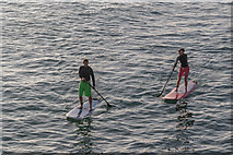 TQ3103 : Paddle Boarders, Brighton Pier, East Sussex by Christine Matthews