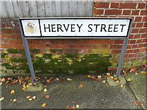 TM1645 : Hervey Street sign by Adrian Cable