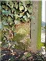 SJ5305 : OS benchmark - Eaton Mascott, Garden Cottage by Richard Law
