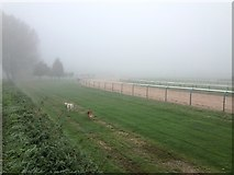 SK7353 : Walking the dogs at Southwell racecourse by Graham Hogg