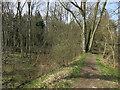 TL6558 : Path along Devil's Dyke by Hugh Venables