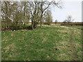 TL6656 : Footpath near Stetchworth Park Farm by Hugh Venables