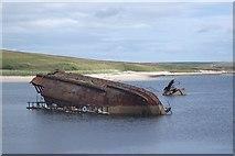 ND4798 : SS Reginald by Richard Webb