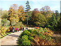 ST7734 : Stourhead Gardens - spectacular colours by Chris Allen