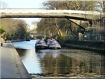 TQ2783 : 'Archimedes' and 'Ara' under bridge 11 by Robin Webster