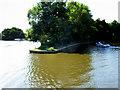 TG3215 : River Bure, Salhouse Island by David Dixon