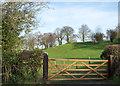 NZ2223 : Trees in field beyond new gate by Trevor Littlewood