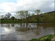 SO5635 : The River Wye near Wood View by Rod Allday