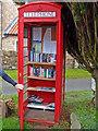 NZ1212 : The News Box, Hutton Magna by wfmillar