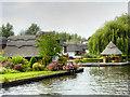 TG3117 : River Bure near Wroxham by David Dixon