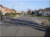 TQ1070 : Beechwood Avenue by Shaun Ferguson