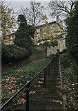 SK5639 : Park Steps in November by John Sutton