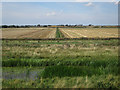 TL4583 : Fields beyond the Counter Drain by Hugh Venables