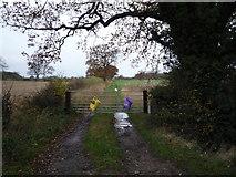 NZ2114 : Gated farm track off the B6275 by JThomas