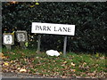 TM0230 : Park Lane sign by Adrian Cable