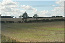 SP9563 : Farmland, Wymington by N Chadwick