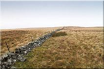 NN9205 : Weather Hill by William Starkey