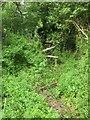 SU0122 : Overgrown stile, Woodminton by Derek Harper