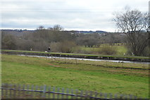 SJ8842 : Trent & Mersey Canal by N Chadwick