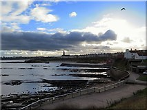 NZ3671 : Cullercoats Bay from Brown's Point by Andrew Curtis