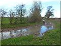 TL3876 : Back Drove near Colne in Cambridgeshire by Richard Humphrey