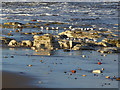 NZ5234 : Sanderlings on North Sands... by Oliver Dixon