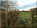 SJ7949 : Halmer End: footpath off Shraleybrook Road by Jonathan Hutchins