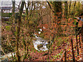NY3704 : Stock Ghyll, Above Ambleside by David Dixon