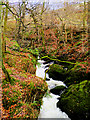 NY3804 : Stock Ghyll, Above the Waterfall by David Dixon