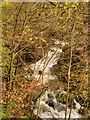 NY3804 : Stock Ghyll, Ambleside by David Dixon