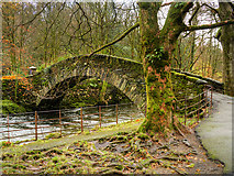 NY3704 : Miller Bridge over the River Rothay at Ambleside by David Dixon