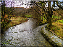 NY3704 : Scandale Beck Flowing into River Rothay by David Dixon