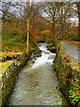 NY3704 : Rothay Park, Stock Ghyll by David Dixon