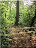 SX9065 : Barred path, Chapel Hill Pleasure Grounds by Derek Harper