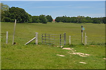 TQ5244 : Kissing gate, Penshurst Park by N Chadwick