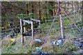 NN0764 : Edge of the forest, Gleann Righ by Jim Barton