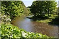 NU0601 : The River Coquet by Philip Halling