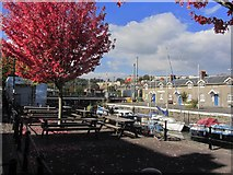 ST5772 : Bristol Floating Harbour by Nova Scotia Pl by Colin Park